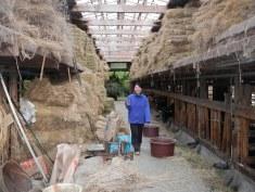 Tomoko in the barn