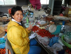 Mrs Watanabe preparing tomatoes for sale