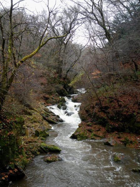 Gushing water in Taishaku Gorge