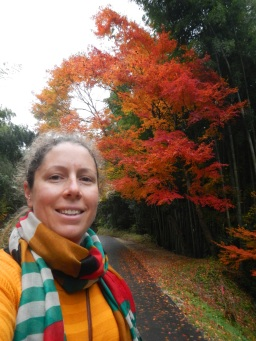 Beautiful Japanese maple near the Iwami Ginzan silver mine
