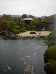 Koi pond (Adachi Museum of Art)