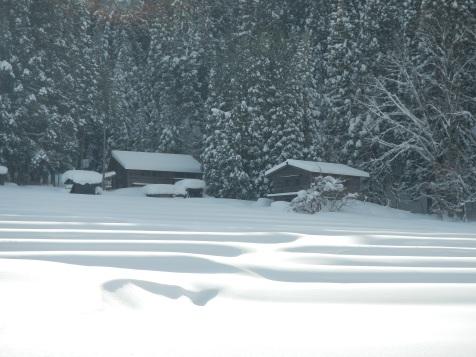 Snow ripples