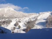 Glorious morning, and not a person on the slopes