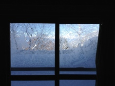 Crazy ice crystals on the window of our house