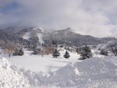 Yamaboku Wild Snow Park: Beautiful in any weather