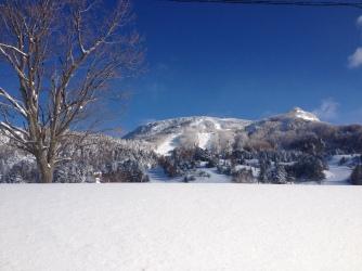 Sparkly snow perfection