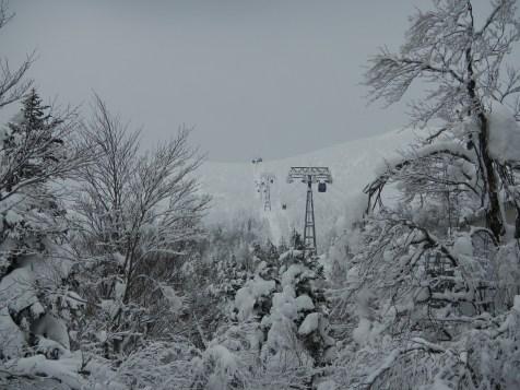 Icy summit of Zao (Yamagata)