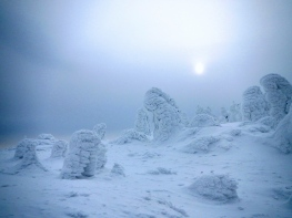 Eerie summit (Zao, Yamagata pref)