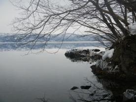 Icy shore (Lake Towada, Aomori)