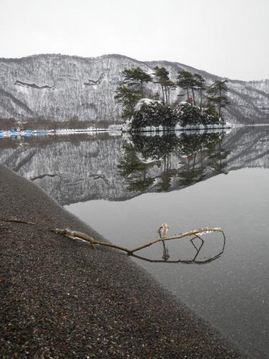 Branch on the lake's edge (Lake Towada, Aomori)
