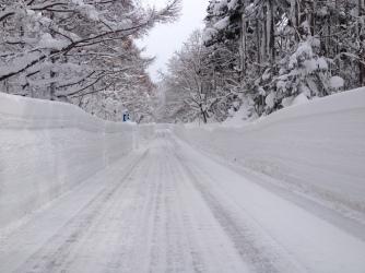Super tall snow drifts (Aomori pref)