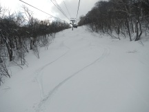My two tracks for the day