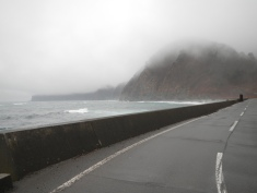 Foggy weather along the Iwate coastline