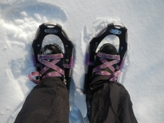 My first snowshoe experience