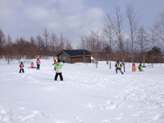 Snowball fight/dodgeball/capture the flag game